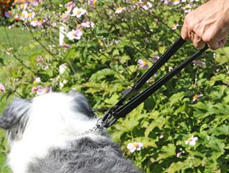 Walkybag Leine kurz - Gassitasche für Hundehalter - Kotbeutel entsorgen