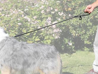 Walkybag Leine lang - Gassitasche für Hundehalter - Kotbeutel entsorgen